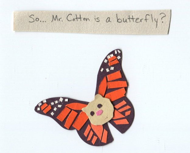 """So Mr. Cotton is a butterfly?"""